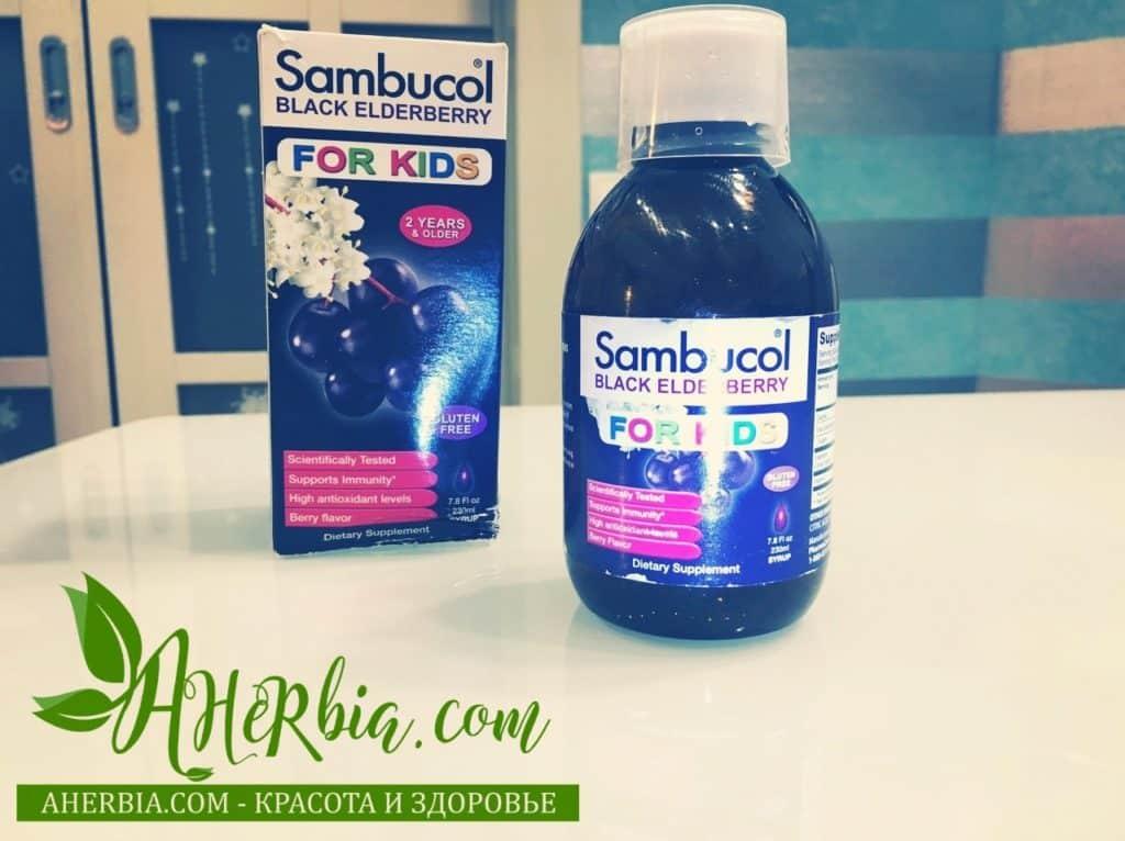 sambucol бузина иммунитет