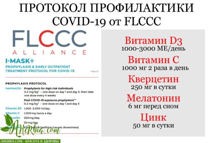 протокол профилактики covid-19